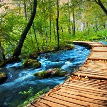 Fotografie plitvicka-jezera-galerie_original.jpg